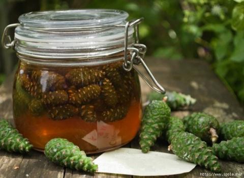 ХИЖИНА ЗДОРОВЬЯ. «Сосновый мёд» – уникальное средство от простуды и кашля!