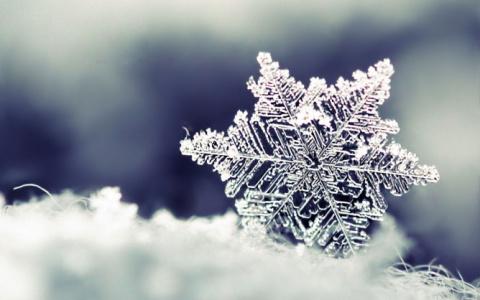 Отец исполнил мечту дочки: сделал для нее снег