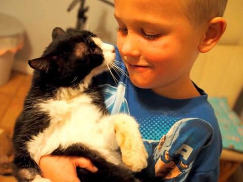 20-летний кот обрел любящую …