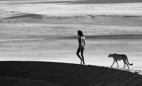Опасные, дикие и невероятно красивые встречи фотографа Дэвида Ярроу