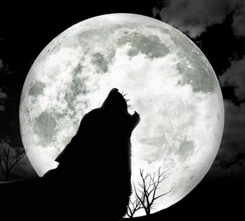 В ночь на 11 мая не пропустите полнолуние Волка!