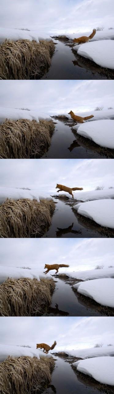 Прыжок на другой берег