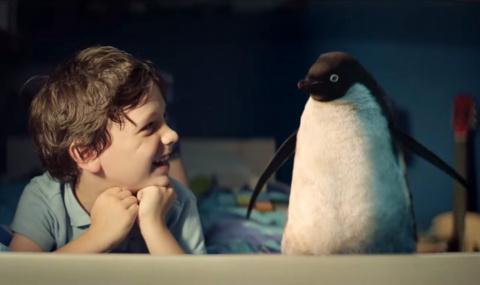 Мой друг пингвин