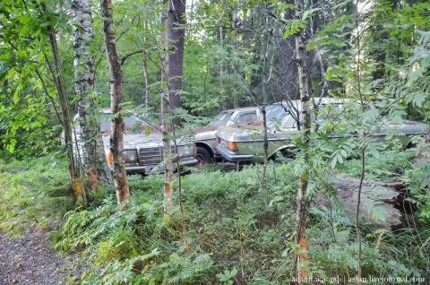 Поворот не туда. Таинственное кладбище мерседесов в Финляндии