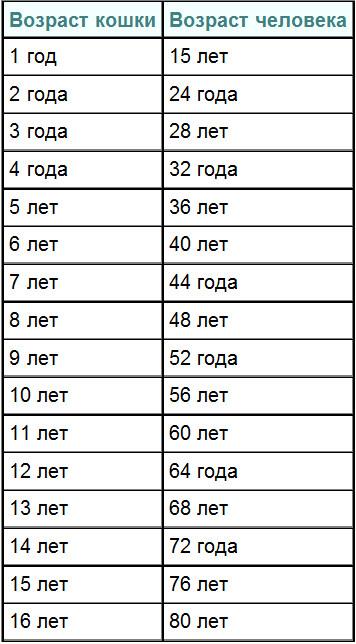 Таблица соответствия возраста собаки/кошки и человека