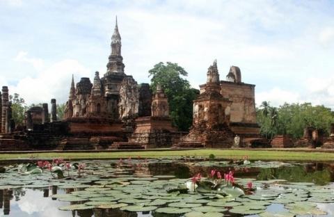 Как появилась голова Будды в корнях священного дерева бодхи