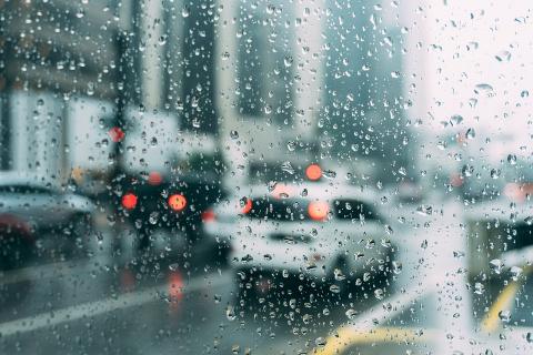 В выходные синоптики обещают калининградцам ветер и дождь