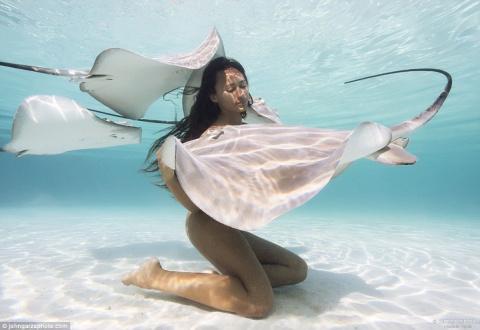 Модель с Таити поражает своими фотосессиями в окружении акул и скатов