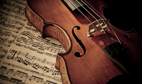 Скрипка, которую не поняли. Юлия Витязева