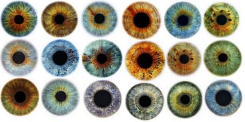 Цвет глаз может рассказать о…