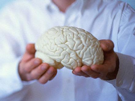 Мозг и личность