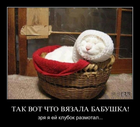 http://mtdata.ru/u13/photo363E/20318832398-0/big.jpeg