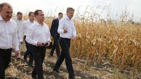 Медведев поручил выделить Пс…