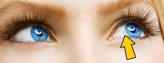 12 вещей, которые глаза могу…