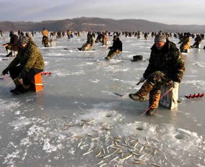 Вопрос о снастях для зимней рыбалки на корюшку и навагу