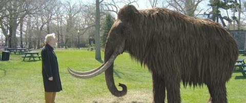 10 вымерших животных, которы…