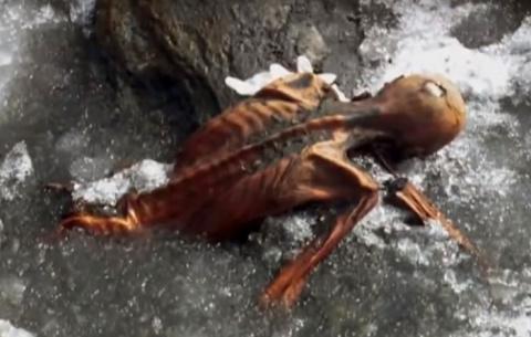 За что мумия мстит своим отк…