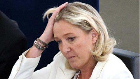 Евро — обуза для Франции, — Ле Пен