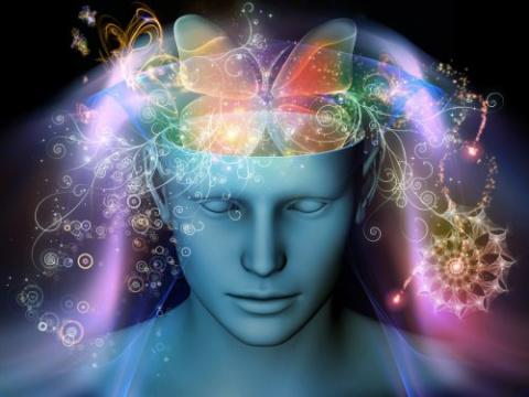 5 простых привычек, которые восстанавливают клетки мозга (нейрогенез)