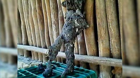 Фрагменты сгоревшего космического костюма были найдены на месте взрыва юкатанского метеорита