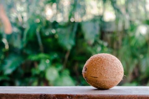 Захотелось мне как-то кокоса…