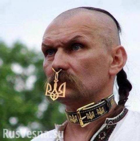 Героический идиотизм как идеология современной Украины