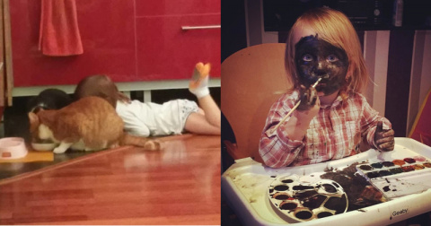 Ребёнок ест из миски кота? Это уже проблемы кота