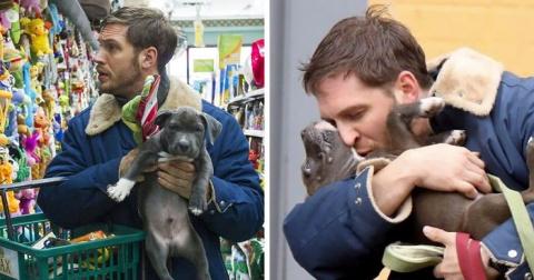 Том Харди с собаками — одна …