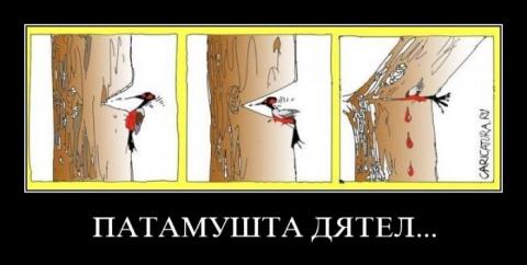Украину разрушил не Порошенк…