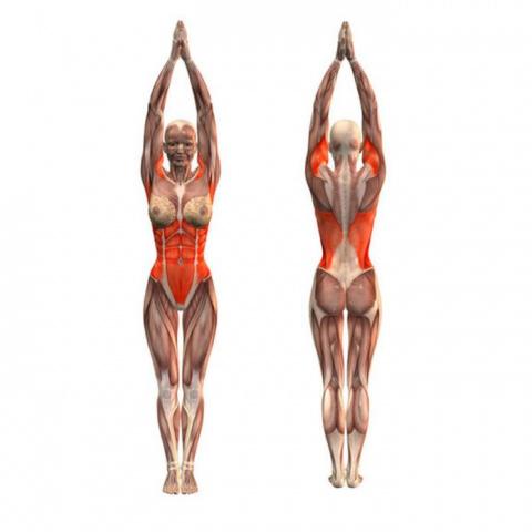 Упражнения для похудения от доктора Бубновского