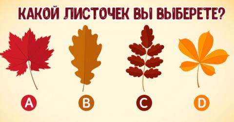 Выберите листочек и узнайте,…