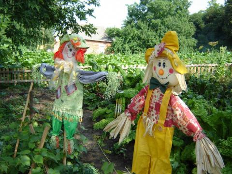 Пугало садовое своими руками (мастер-класс). Как избавиться от травы на садовой дорожке
