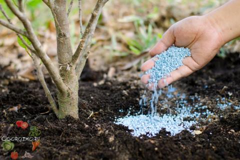 Минеральные удобрения, их виды и характеристика – нужно знать каждому дачнику