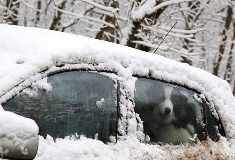 Более 40 машин столкнулись из-за снегопада в Чехии