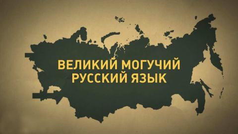 Учителя предлагают стандартизировать нормы русского языка