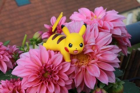Pokemon Go установила рекорд загрузок в App Store и Google Play