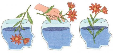 В чём разница между интеллек…