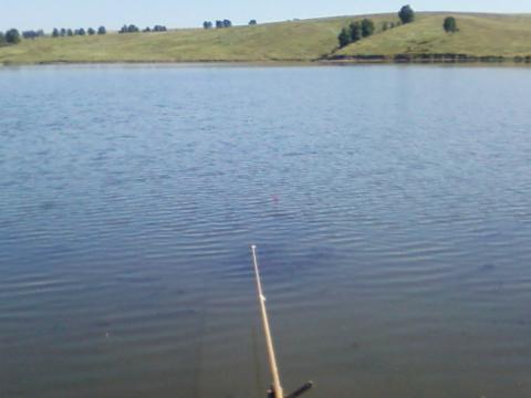 Русская рыбалка.