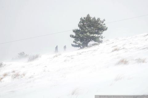Крым засыпало снегом! Не вес…