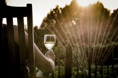 Идеальный сад: самодельные проекты для бережливого домовладельца