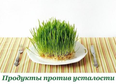 Энергия в тарелке
