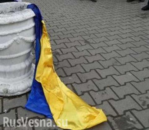 Всё решат без нас! О панике украинских политиков — мнение