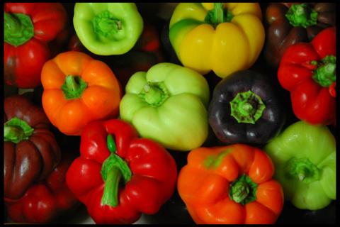 Выращивание рассады перца. П…