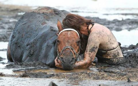 Этот конь тонул в трясине...…