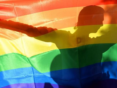 Гомосексуализм с точки зрения науки.