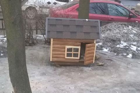 В Петербурге появились домик…