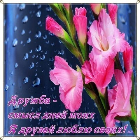 Я_ДРУЗЕЙ_ЛЮБЛЮ_СВОИХ___30М[1]