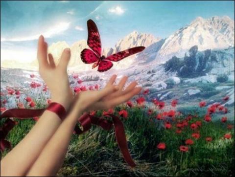 Осуществления ваших желаний: мечты