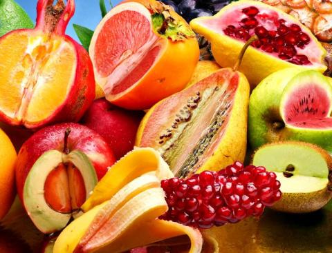 Опасность ГМО. Правда или миф?