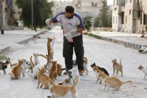 Сириец кормит осиротевших ко…